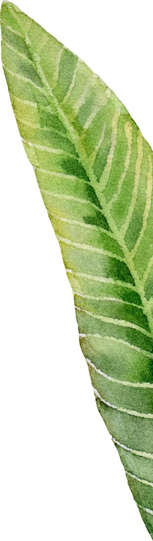 leaf dining