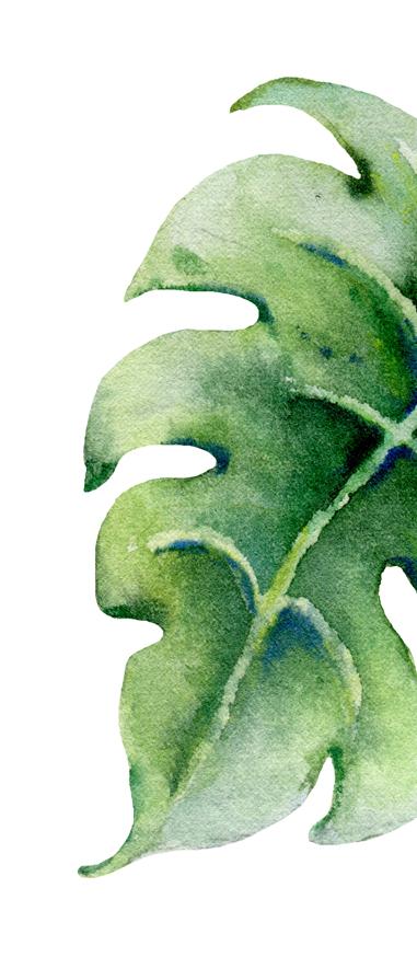 leaf suites